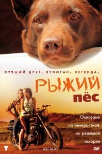 Рыжий пес (2011) смотреть онлайн