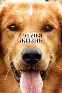Фильм Собачья жизнь (2017) смотреть онлайн